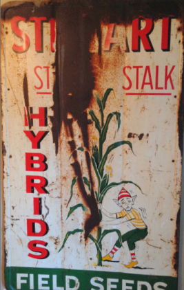 corn sign
