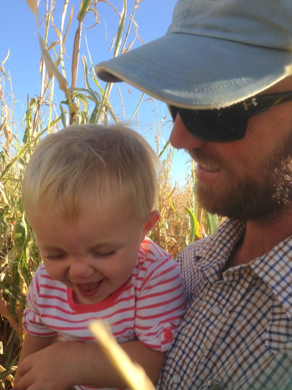 claire checking corn with dad